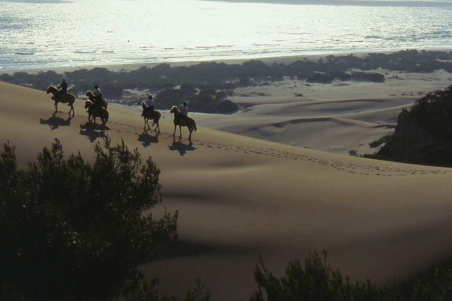 Patara Beach Riding on the Dunes