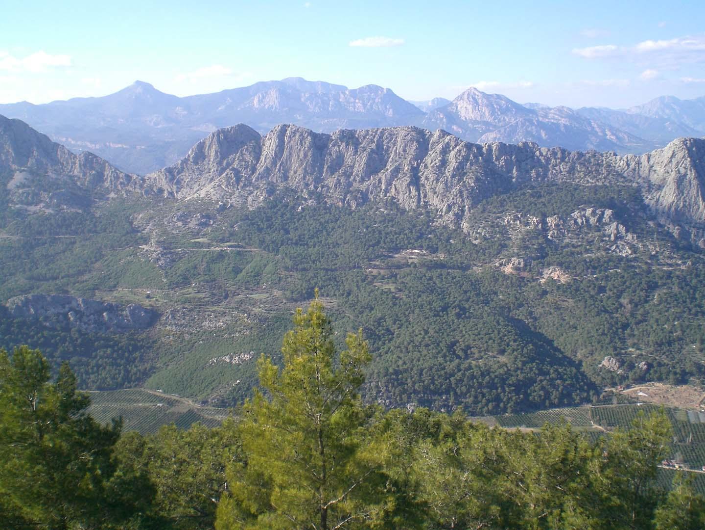mountain views 1